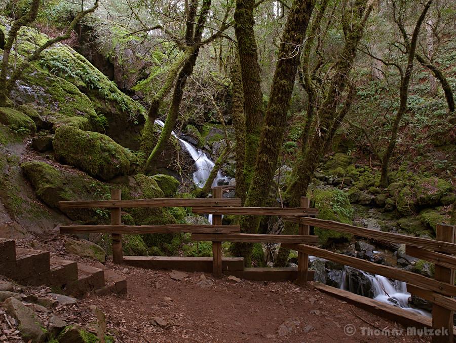 Upper Cataract Falls, Marin, California, January 2011