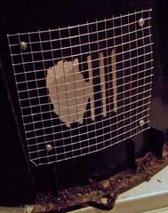 Fix for squirrel damage on compost bin (cbb4104) Tags: path yardwork composting compostbin squirreldamage compostbins