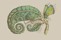 mimetismo (Tolagunestro) Tags: blue flower verde green butterfly leaf sand borboleta folha chameleon camaleo mimetism graveto tolagunestro