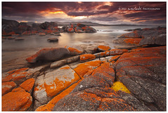 Fired Rock (Dylan Toh) Tags: sunset seascape rock landscape photography coast dusk tasmania lichen dee waterscape bayoffires gnd everlook binalongbay