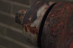 Rust (RydanMotts) Tags: rust macro hydrant decay