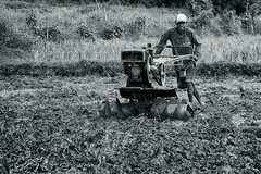 DSC_5263 (TheHouseKeeper) Tags: tractor monochrome field rural blackwhite rice farm philippines farmer agriculture launion plowing mateo province pinoy pilipinas tilling palay agri thehousekeeper handtractor landpreparation bacnotan teampilipinas flickristasindios georgemateo sibsphoenix