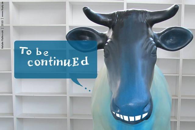 cow_11