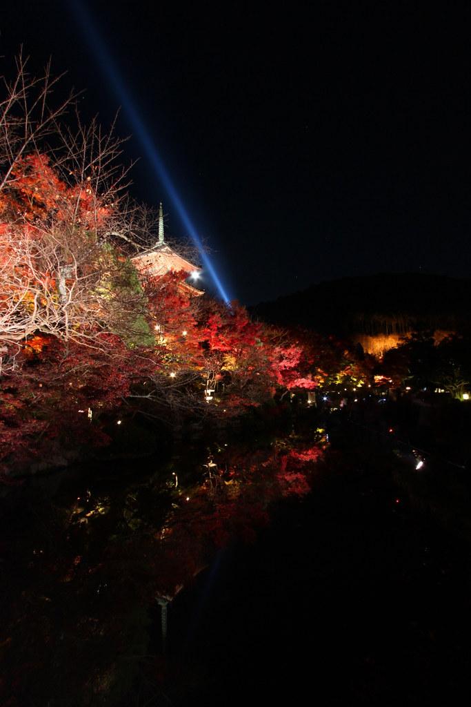 Kiyomizu-dera Illumination 2010  (13)