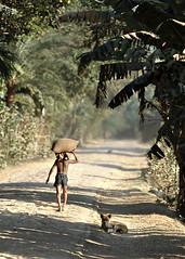 The way (Arunte) Tags: street trees people alberi kids children nikon strada kodachrome bangladesh shimulia marcofrancini arunte marcofranciniphotography