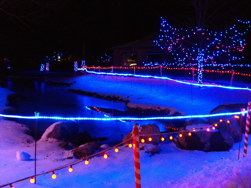 Blue Christmas Lights Around The Stream At Wildwood Zoo Marshfield ...