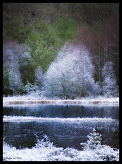 Dressed in White (Arnfinn Lie, Norway) Tags: trees winter lake cold ice nature water norway rogaland carlzeiss1680mm sonyalpha350 arnfinnlie carlzeisslover