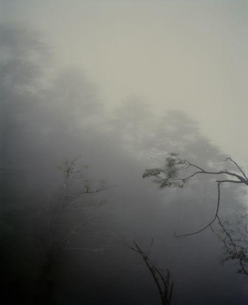 Sandra Kantanen, Untitled Mountain 3, 2009