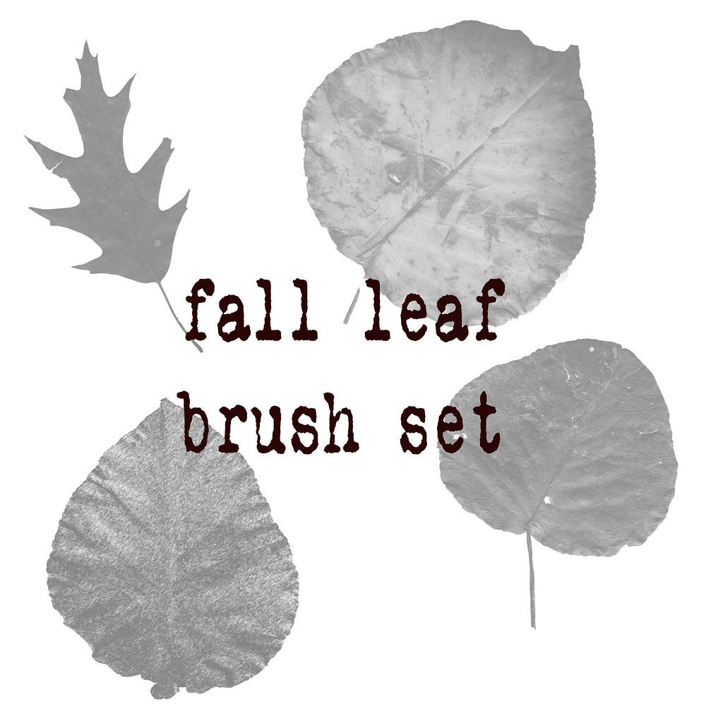 Fallleafbrushset
