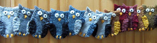 More new owls