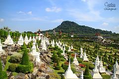 Pattaya (2)