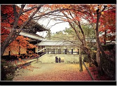 Crimson Kyoto (Ryan&Remus) Tags: autumn trees red orange crimson leaves japan temple scenery kyoto photographybykm ryanremusphotographybykm