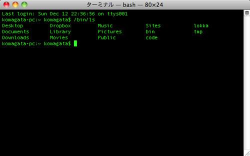 ターミナル — bash — 80×24