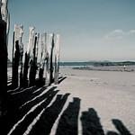 Entre Las Sombras/Between The Shadows
