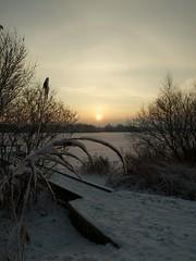 Winterlandschap Paterswoldse meer