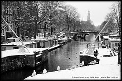 (PhotoA.nl) Tags: street bridge winter white snow cold water amsterdam canal gulls prinsengracht meeuwen houseboats timeless gracht westertoren westerkerk korteprinsengracht woonboten eenhoornsluis wwwphotoanl