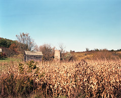 One Down Two To Go (Alan Yahnke) Tags: autumn usa mamiya film wisconsin barn mediumformat cornfield fuji scanner shed silo scanned epson 6x7 expired perfection 220 expiredfilm npc160 rb67 mamiyarb67 mamiyarb67pros 65mm fujinpc160 scannedfilm v750 autaut rb67pros mamiya65mm epsonperfectionv750 epsonv750scanner alanyahnke