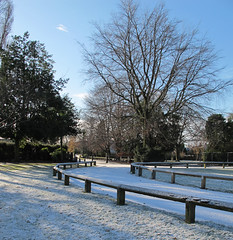 Advent #19 A touch of winter (Christine Dolan) Tags: snow manchester parks g11