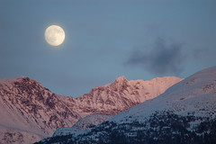 Whistler by Moonlight (WendyG79) Tags: trees sunset moon snow canada mountains night whistler britishcolumbia skiresort alpenglow whistlerblackcomb