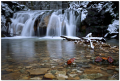 cascade and leaves (chris frick) Tags: winter snow cold ice leaves freezing depthoffield crisp filter lee cascade gnd remoteshutterrelease wetknee canoneos5dmarkii chrisfrick gitzoballhead canonef1635mm28liiusm dofinlandscapephotos