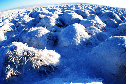 Frozen Hillocks