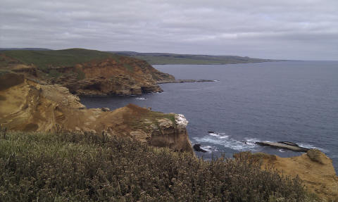 View from cliffs at Point Webb
