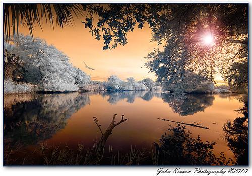 Tomoka State Park, Florida 20