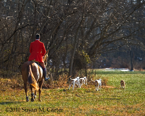 foxhunting, Old Dominion Hounds