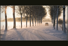 Driving home for Christmas (Bert Kaufmann) Tags: auto christmas xmas schnee winter mist snow holland netherlands car sunshine misty weihnachten landscape nevel driving nebel sneeuw nederland noel neige nl zon olanda roermond winterwonderland kerstmis limburg landschap niederlande tegenlicht winterlandschap lindenweg chrisrea asselt drivinghomeforchristmas grondnevel