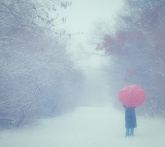 walking in a winter wonderland (sparkleplenty_fotos) Tags: trees woman snow umbrella woods path getty gettyimages sliders hss happysliderssunday licensedbygetty
