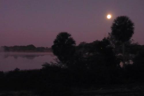 jake-scott-dusk