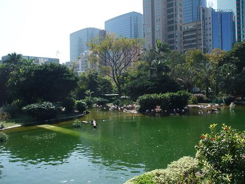 九龍公園@香港