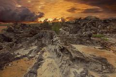 Frozen Lava Sunrise (mojo2u) Tags: sunrise hawaii lava maui kapalua mauihawaii nikon2470mm nikond700 punapoint