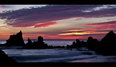 Magenta Skies (Didenze) Tags: california pink sunset seascape birds clouds boat catalina glow silhouettes explore coronadelmar canon450d didenze magentaskies