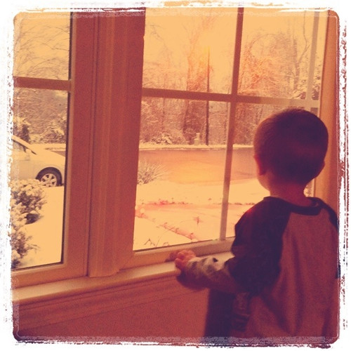 watching the snow fall
