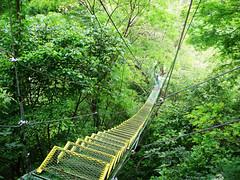Costa Rica - by lindsaybobindsay