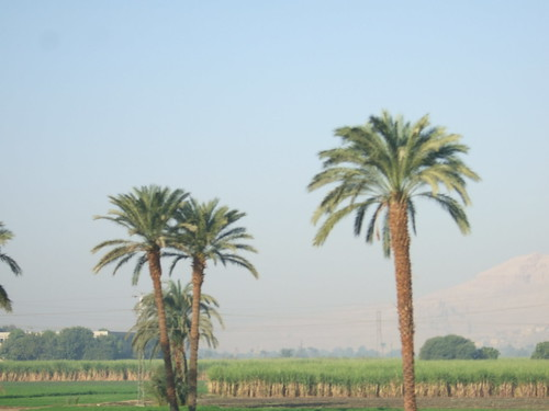 Valley of Kings in Distance