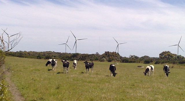 Wind farm near Wonthaggi
