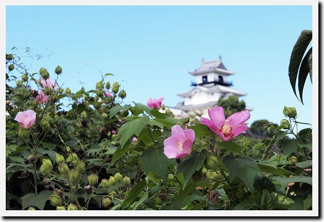 100925_102915_掛川城