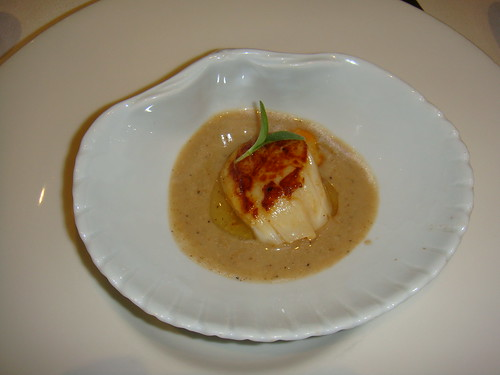 Vieira sobre salsa de boletus