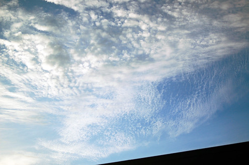 2011 01 07 photo