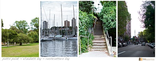 rushcutters bay park pet photography point potts