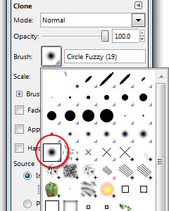 "Choose the ""Fuzzy Circle"" brush from the dropdown panel"