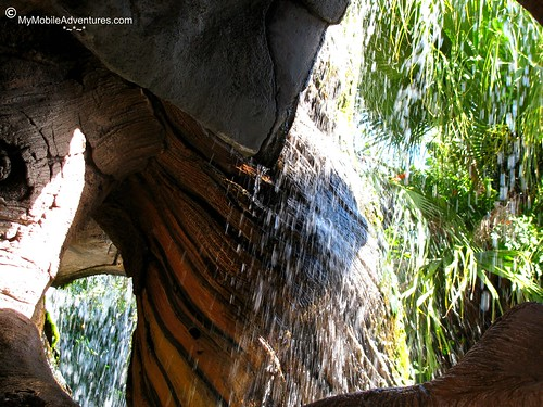 IMG_4920-WDW-DAK-Tree-Of-Life-waterfall