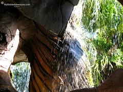 IMG_4920-WDW-DAK-Tree-Of-Life-waterfall (Erin *~*~*) Tags: water treeoflife disneysanimalkingdom waltdisneyworldtreeoflifewater