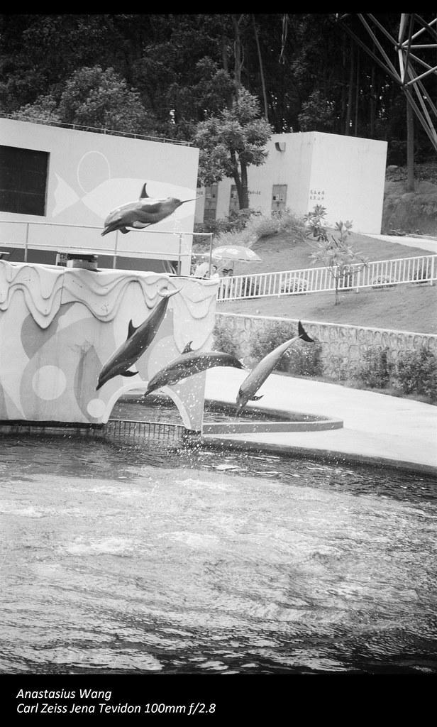 SZ Zoo 03