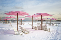 Sugar Beach (Still The Oldie) Tags: pink winter snow toronto ontario canada cool explore queensquay blogto sugarbeach cool2 cool5 cool3 cool6 cool4 pinkumbrellas cool7 torontolifecom iceboxcool unanicool
