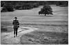 (Antonio Carrillo (Ancalop)) Tags: winter bw españa woman white black tree blanco girl canon arbol mujer spain europa europe chica camino path negro bn invierno almeria 70200 50d chirivel 70200f4usm ancalop