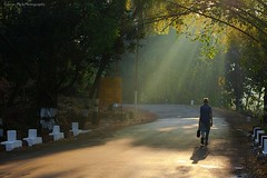 Towards Light.. (Gaurav_Patil) Tags: morning india rural maharashtra konkan ratnagiri kokan ppmay11