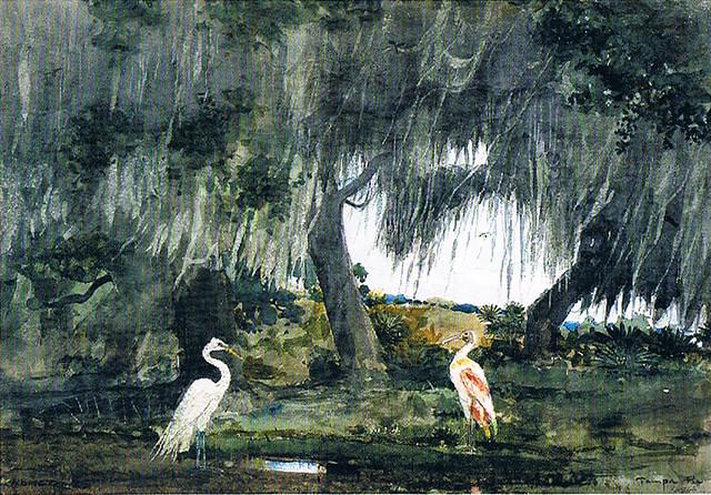 Winslow Homer Tropics